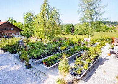 Pflanzpark von Garten Hartmann