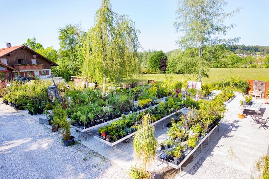 Pflanzenpark im Günztal