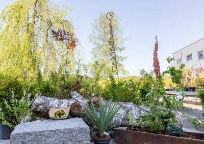 Schöne Pflanzen von Garten Hartmann